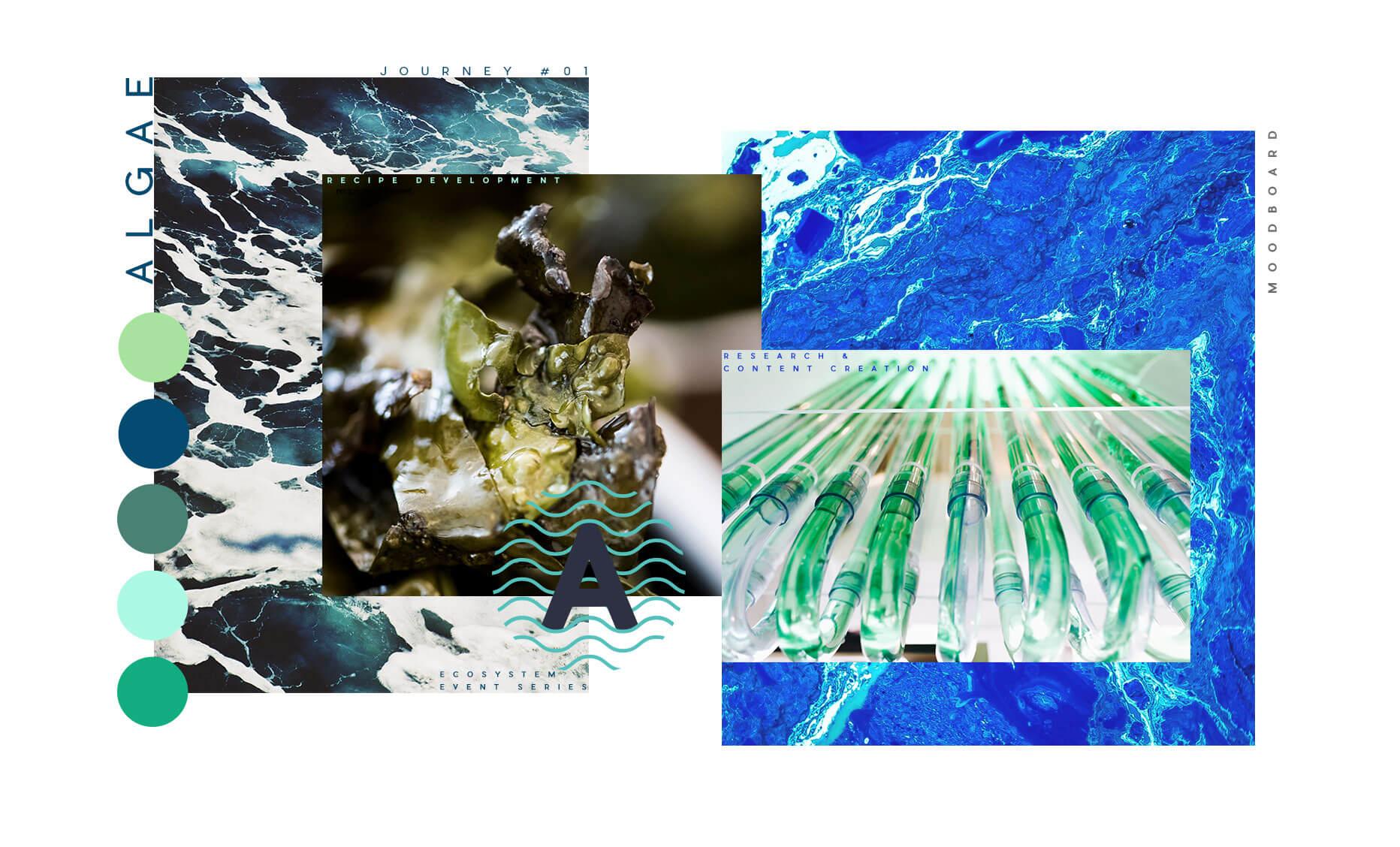 1-algae-moodboard